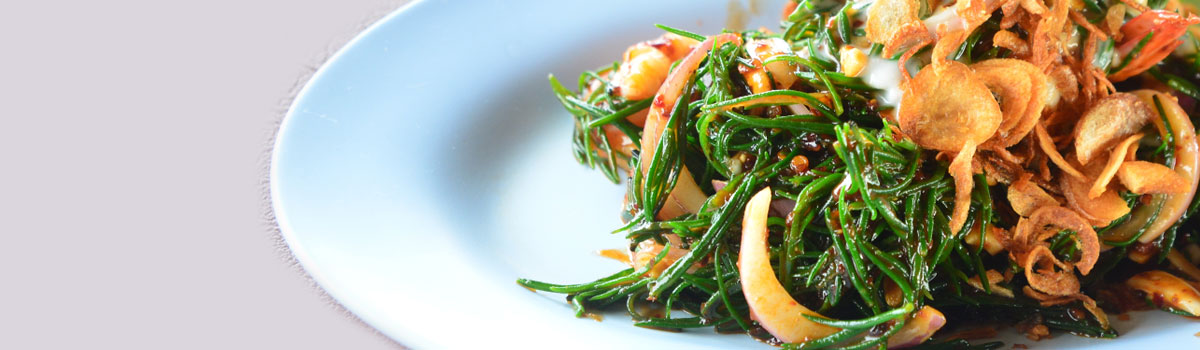 Samphire, a Taste of the Ocean